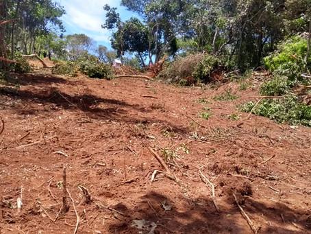 Polícia Ambiental flagra descumprimento de embargo em Itapecerica da Serra