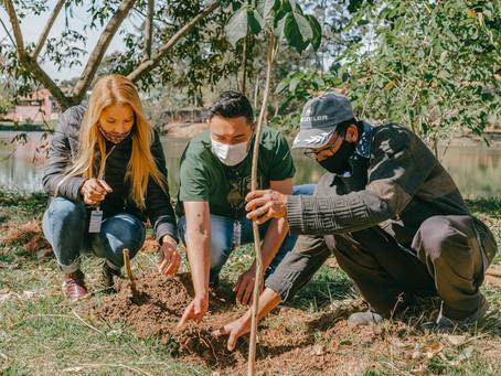 Plantio de árvores nativas marca o Dia de Proteção às Florestas