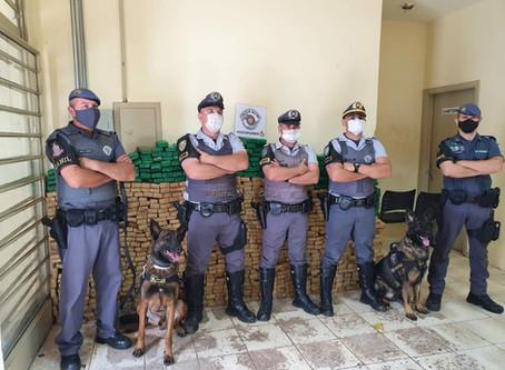 Polícia Rodoviária apreende mais de 800kg de drogas em São Roque