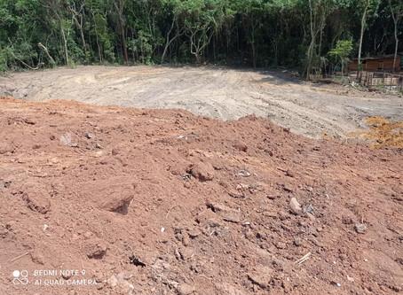 Caiapiá: Polícia Ambiental flagra desmatamento em área de mata nativa