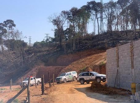 Polícia Ambiental flagra desmatamento e crime ambiental em Cotia