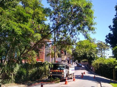 Granja Viana: Fios de energia se rompem e interditam Avenida São Camilo