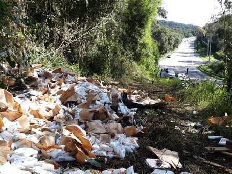 São Roque: Caminhão perde freio e cai em barranco na Rodovia Raposo Tavares