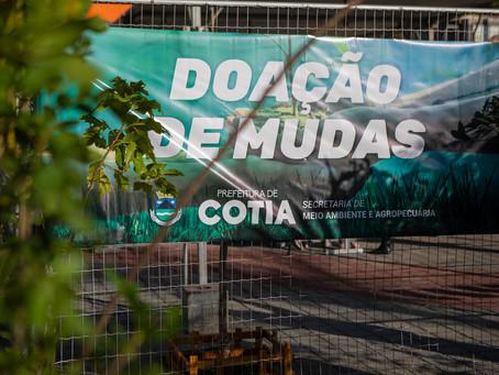 Semana da árvore: Secretaria do Verde faz pedágio ambiental