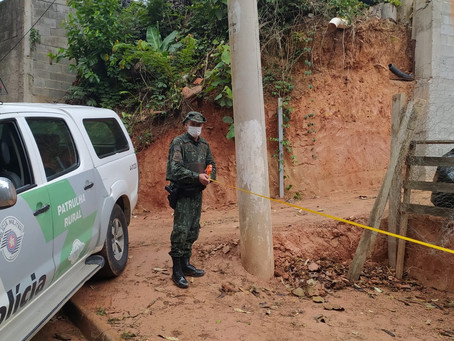 Polícia Ambiental realiza Operação Jequitibá