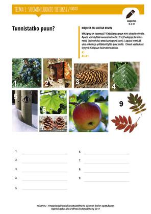 SL 2.10 Tunnistatko puun?