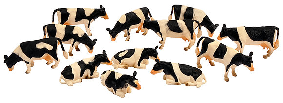 Vaches noires et blanches    T7450750