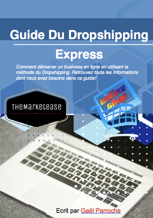 Guide du dropshipping