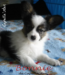 60 days - Bonnie