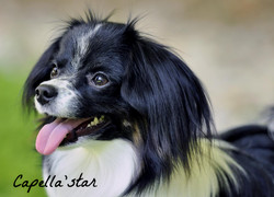 10 months - Amellie