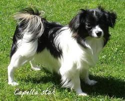 9 months - Amellie