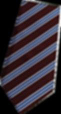school tie 2019.png