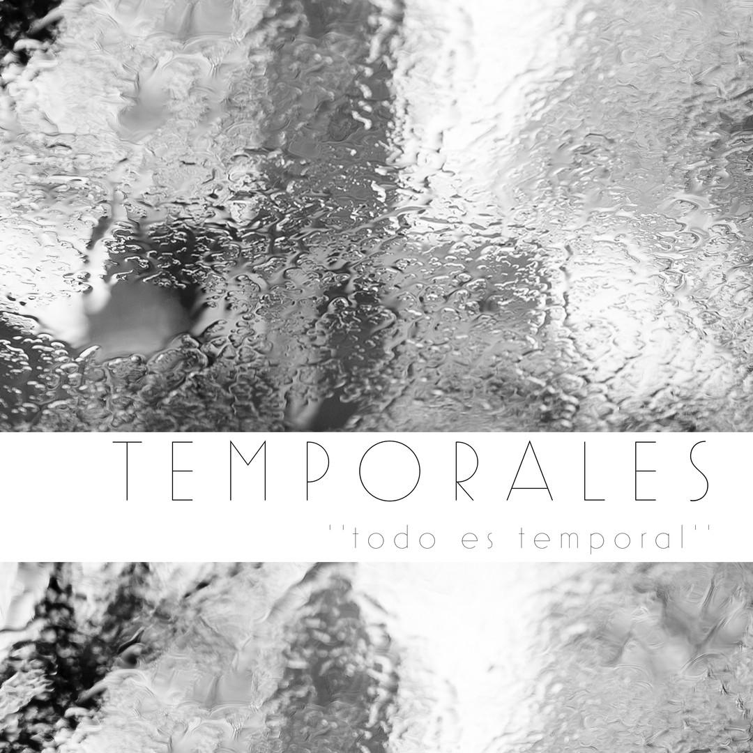 Book Temporales 'todo es temporal'