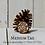 Thumbnail: Marble Fox