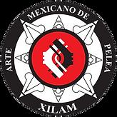 xilam logo (1).png