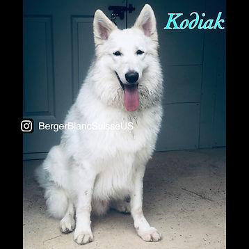Kodiak July 2021.JPG