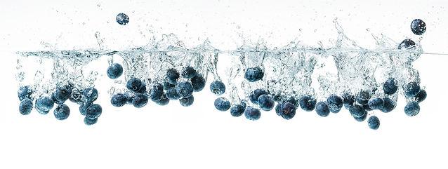 blueberry optic