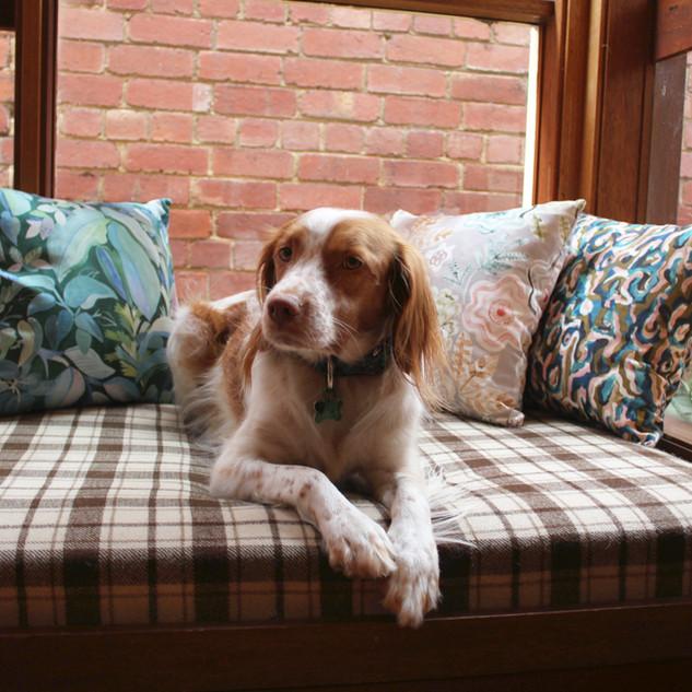 3_cushions.jpg