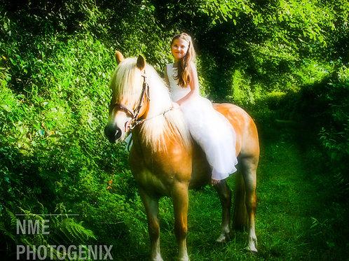 Equine Glamour Portraiture