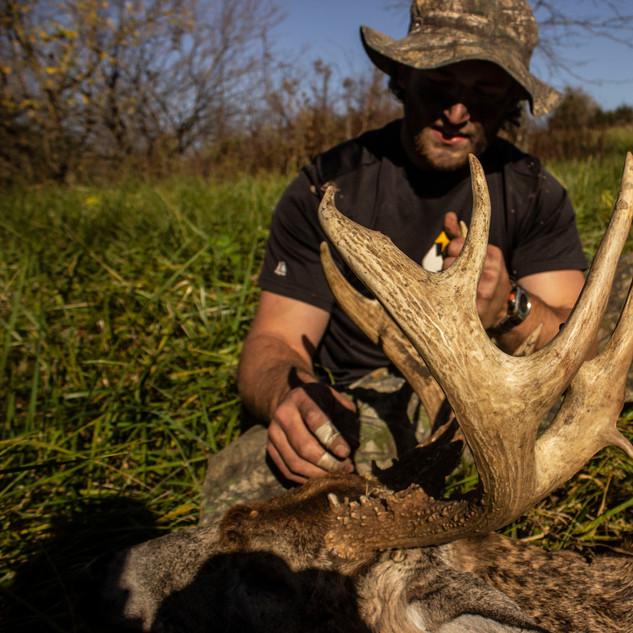 Missouri Whitetail Deer Hunting
