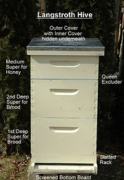 Langstroth-Hive-Parts-680x1024_edited.jp