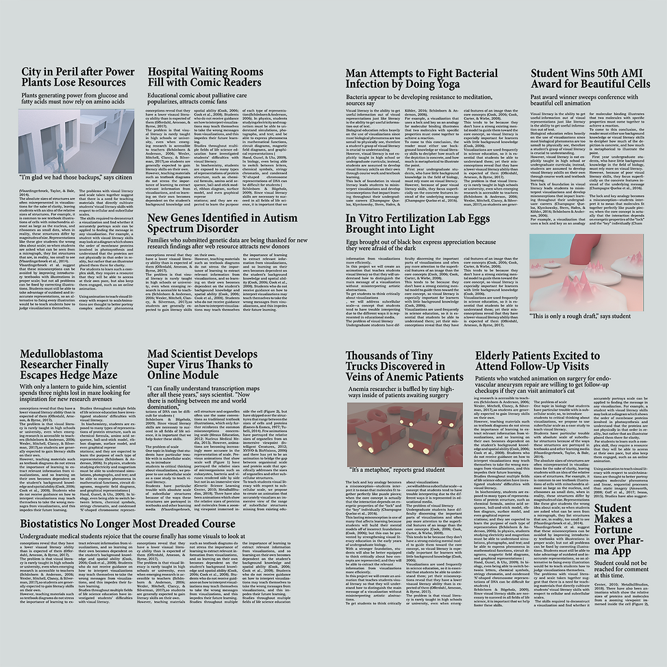 newspaper_inside_scsh.png