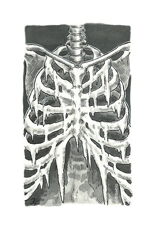 04 - Freeze & Bone