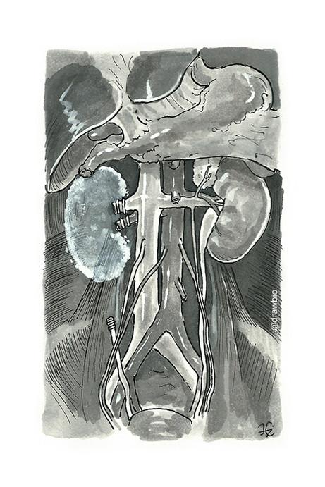 22 - Ghost & Kidneys