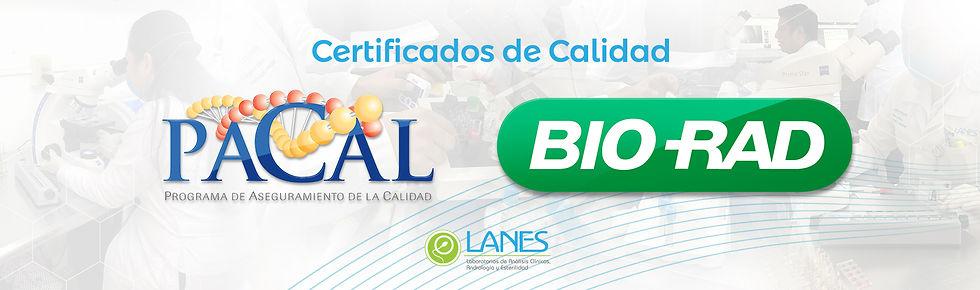 Certificados Laboratorios Lanes