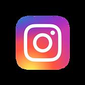 logo instagram laboratorios lanes.png