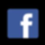 logo facebook laboratorios lanes.png