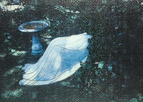 """Bird Bath"" by CHANDRA NOYES"