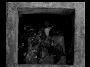 Screen Shot 2020-01-05 at 9.22.38 PM.png