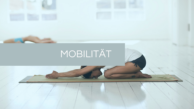 Mobilität.png