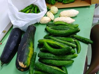 お野菜がたくさん 20210908