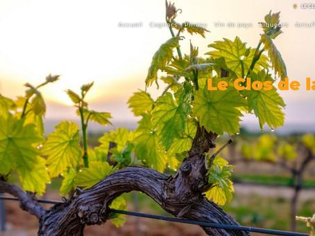 Création Site Internet Producteur Vigneron Cognac Pineau Liqueur Vins de Pays de la Loire Aquitaine