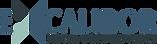 logo excalibor.png