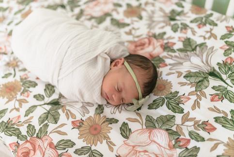 Web_Frankie Newborn (24 of 27).jpg