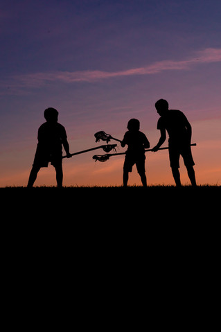 Web   Family   Sunset Silhouettes (3 of