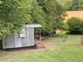 Shepherds Hut.jpeg