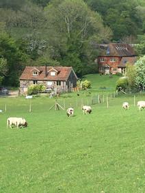 Locket's Farm