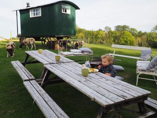 Shepherds Hut .jpeg