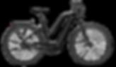 FLYER_E-Bikes_Gotour6_Trapezrahmen_black