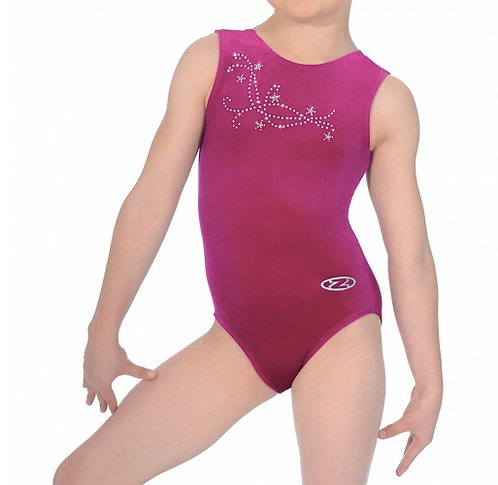 Zone Z103FAF Leotard