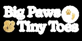 BPTT_Logo_BPTT_White.png