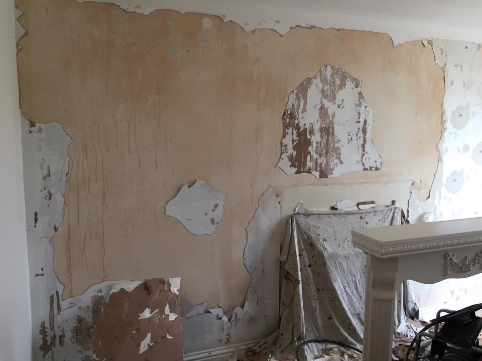 Feature wall before