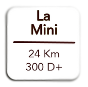 lamini.png