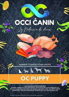 oc-puppy.jpg