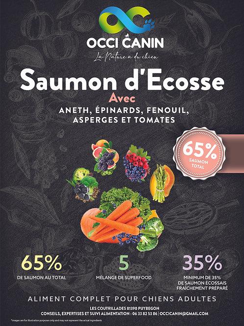 OC Athlétic Superfood Saumon d' Ecosse Grain free