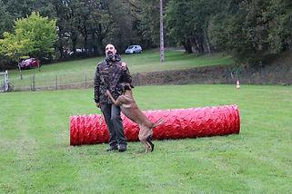 Ludovic Licata éducateur canin OCCI CANIN Tarn 81 France
